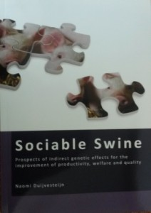 Sociable swine (Duijvestein)