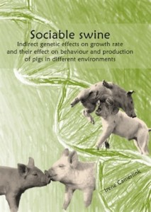 fwc blog NU phd Sociable swine 220415